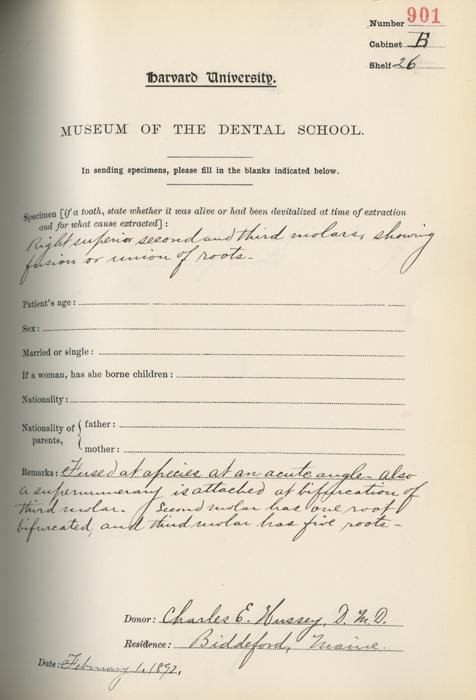 Museum Catalog Entries