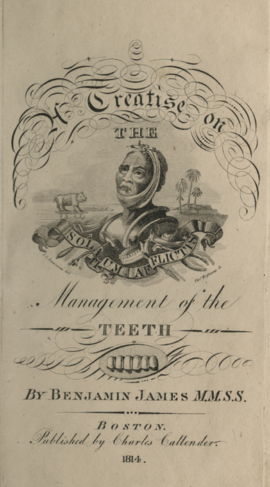 A Treatise on the Management of the Teeth