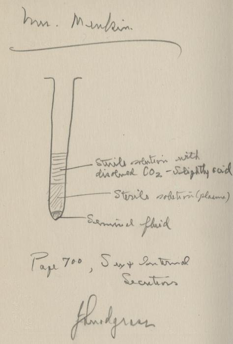 Human Ova Plan and IVF sketch