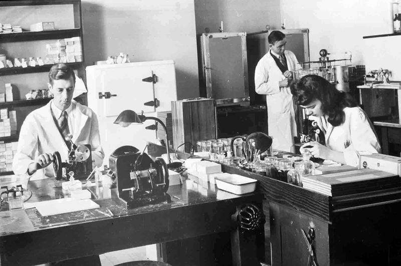 Photographs of Researchers in the Department of Legal Medicine, circa 1946.
