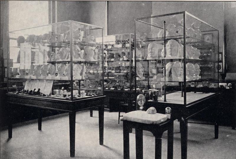 The Harvard Dental School Museum