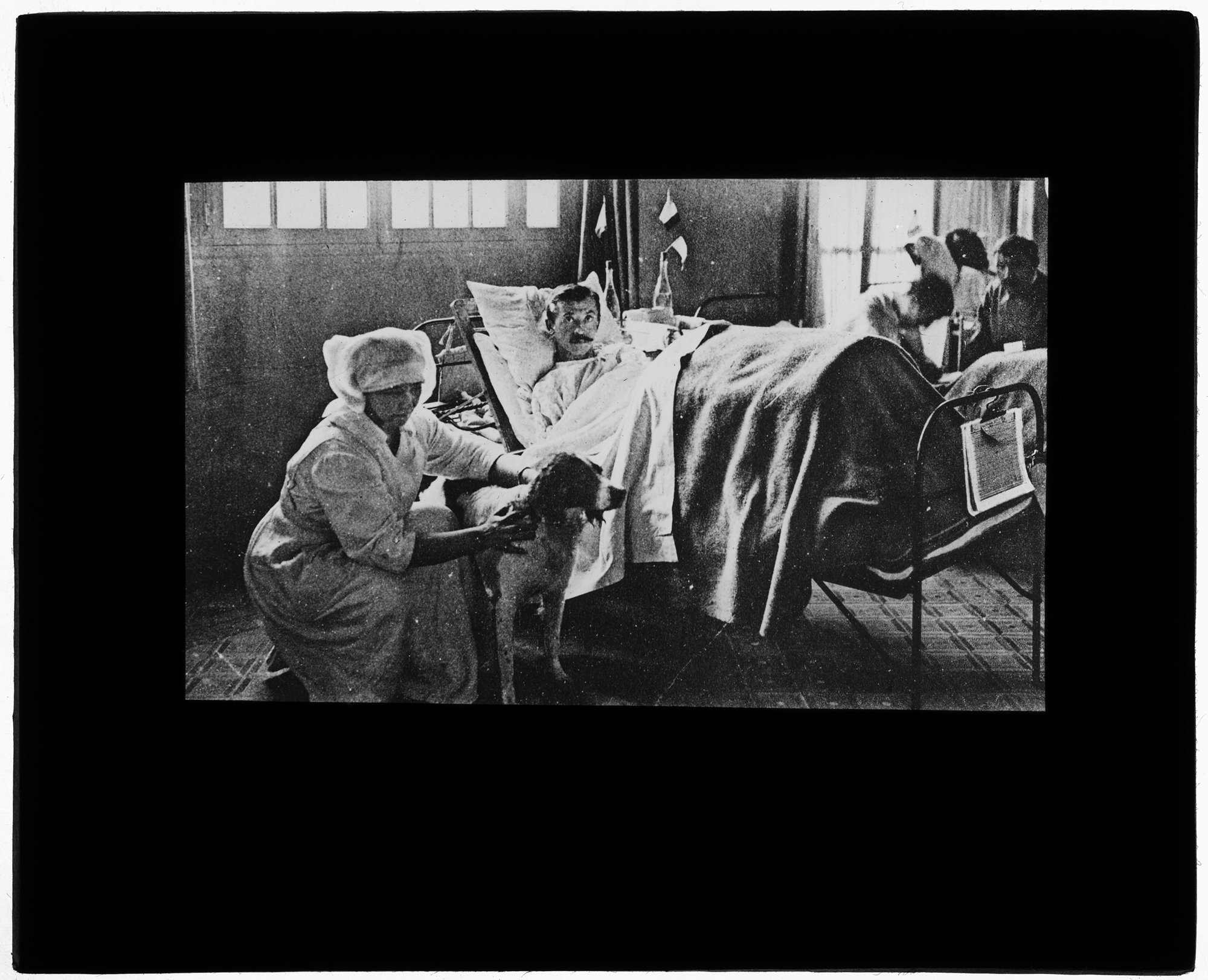 Patient in bed, attended by nurse and dog · Center for the History ...
