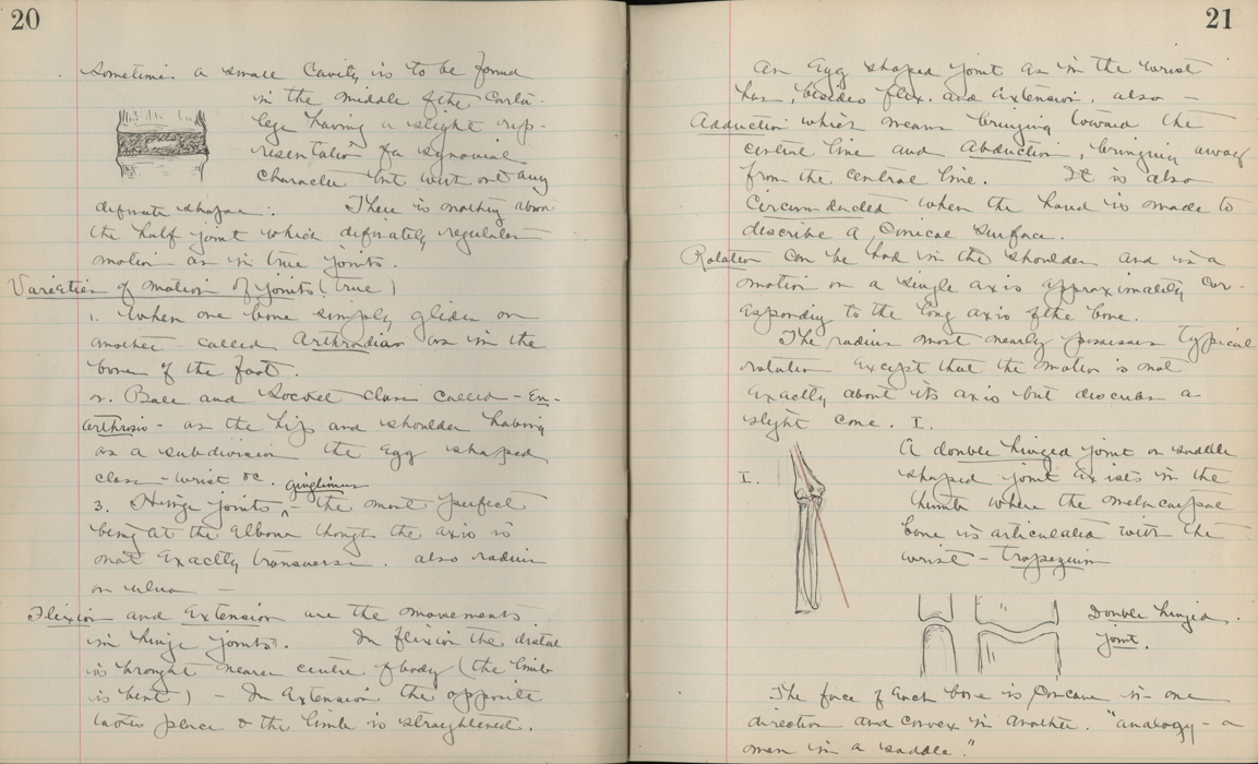 Student Lecture Notes On Anatomy Onview Digital Collections