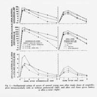 Antibacterial action of serum of normal young men