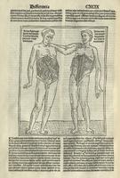 Conciliator differentiarum philosophorum et medicorum
