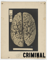 Poster of a criminal brain